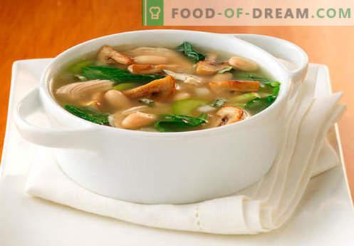 Soupe au bouillon de champignons - les meilleures recettes. Comment bien cuire la soupe dans un bouillon de champignons.