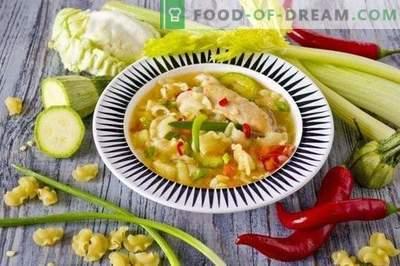 Vištienos sriuba su daržovėmis ir makaronais