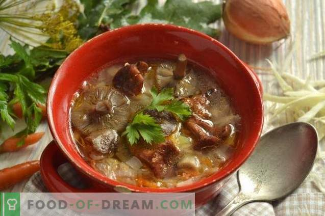 Soupe aux champignons et chou