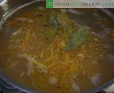 Soupe de maquereau frais congelé, recettes avec photos. Comment faire cuire la soupe de maquereau