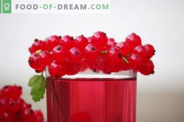 Recipes for red and white currants