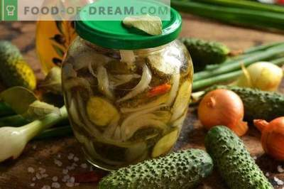Salata de castravete cu ceapa pentru iarna