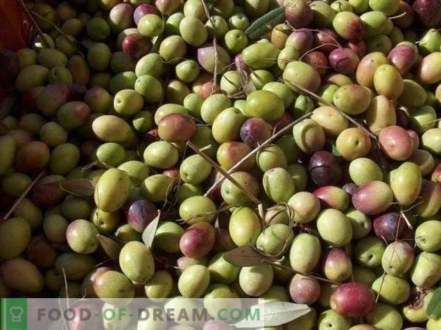 Olives ou olives - quelle est la différence et l'avantage?