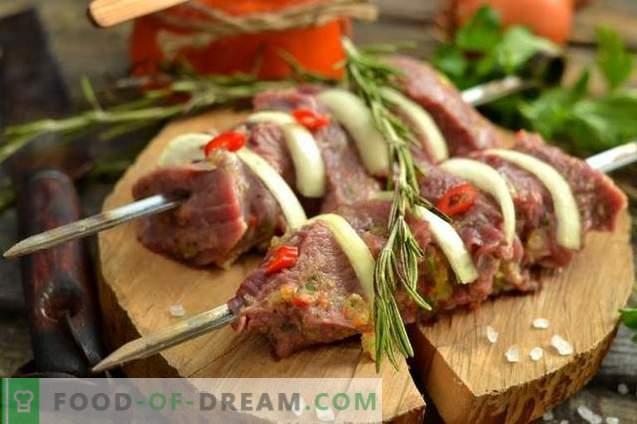 Kebab de boeuf juteux