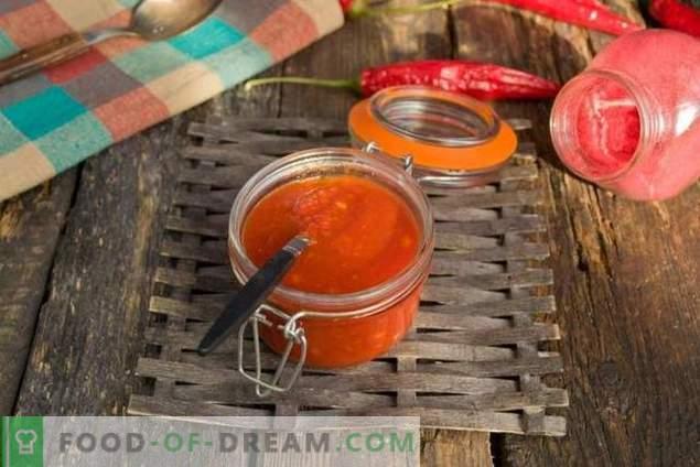 ketchup à la maison à la maison pour l'hiver