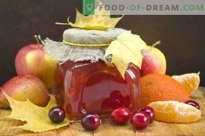Jabolčni džem z brusnicami in citrusi