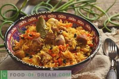 Köstlicher Pilaw mit Schweinefleisch in Ente auf dem Teller