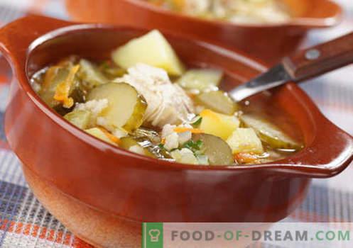 cornichon fait maison - les meilleures recettes. Comment bien et savoureux cuisiner à la maison rassolnik.