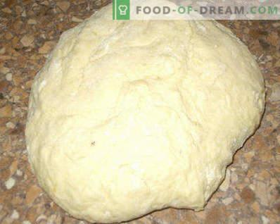 Pâte pour tartes au lait fermenté, levure, pour tartes frites et cuites au four