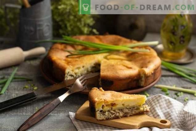 Pastel con pescado enlatado - sin mucha molestia