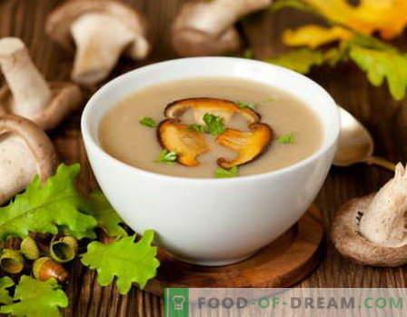 Sauce aux champignons - les meilleures recettes. Comment bien cuire la sauce aux champignons.