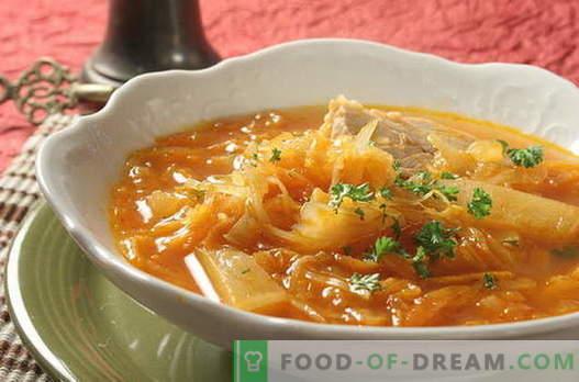 Soupe au chou - les meilleures recettes. Comment bien et savoureux cuire la soupe au chou.