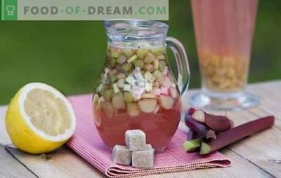 Rhubarb Kvass est une boisson idéale pour une journée chaude. Les meilleures recettes de kvass à la rhubarbe avec épices, menthe, citron, miel