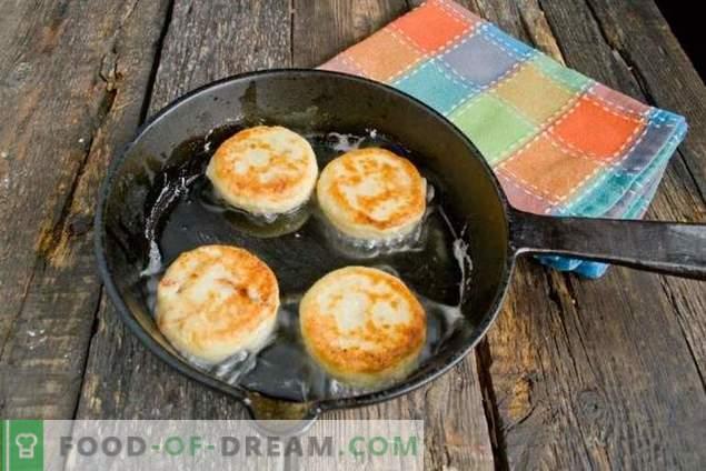 gâteaux au fromage sur un leurre avec des abricots secs et du chocolat