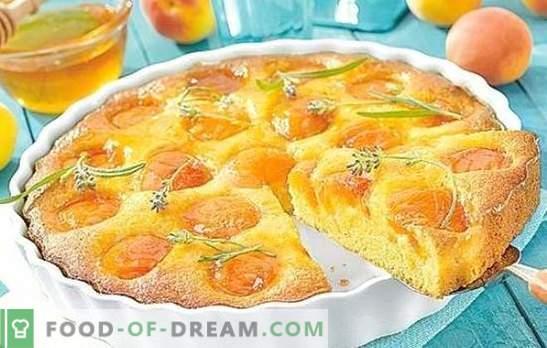 Tarte aux abricots sur kéfir - cuisine brillante et savoureuse. Top 6 des meilleures recettes de tartes aux abricots sur yogourt
