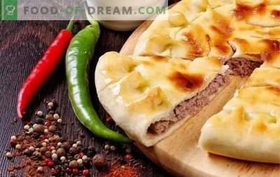 Tarte avec de la viande au four: une recette pas à pas pour un festin copieux et savoureux. Avec des recettes étape par étape, il est facile de cuisiner une tourte à la viande au four!