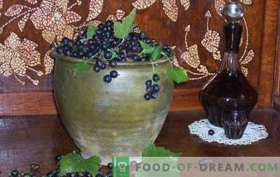 Comment faire du vin de cassis? Cinq recettes de vins de cassis maison simples: jeune, dessert, liqueur