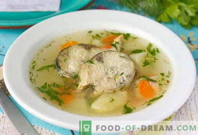 Soupe de maquereau - les meilleures recettes. Comment bien et savoureux cuire la soupe et le maquereau.