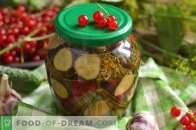 Eingelegte Gurken Gurken