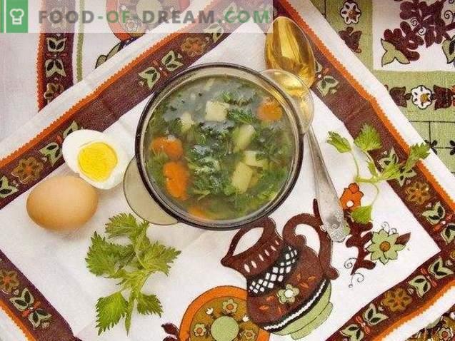 Soupe d'ortie - le plus printanier