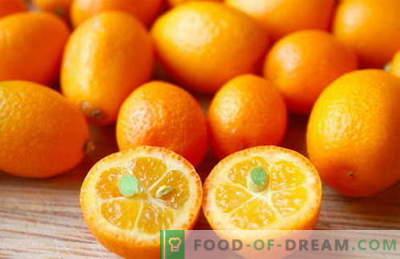 Kumquat - propriétés utiles et utilisation en cuisine. Recettes au kumquat.
