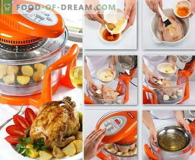 Poulet dans aerogrill - les meilleures recettes. Comment cuire correctement et savourer le poulet dans des fours à convection.