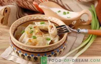Dumplings with onions - an economical option! Different recipes of dumplings with onions and cottage cheese, potatoes, eggs, mushrooms