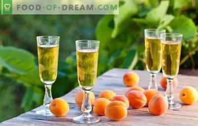 Boissons fortes et sucrées à l'abricot à la maison. Règles de fermentation et de teinture des boissons alcoolisées à base d'abricots