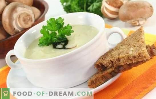 La soupe aux champignons et au fromage fondu est un plat injustement oublié! Recettes meilleures soupes aux champignons avec du fromage fondu