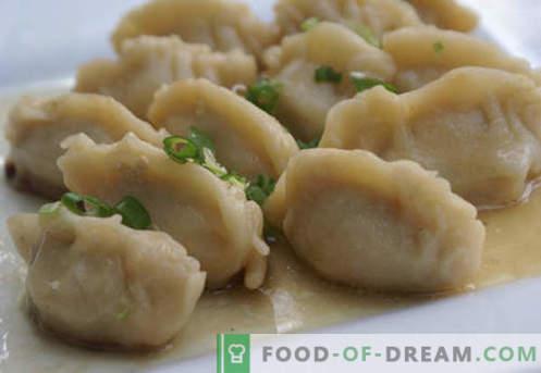 Dumplings on kefir - les meilleures recettes. Comment bien cuire des raviolis sur du kéfir à la maison.