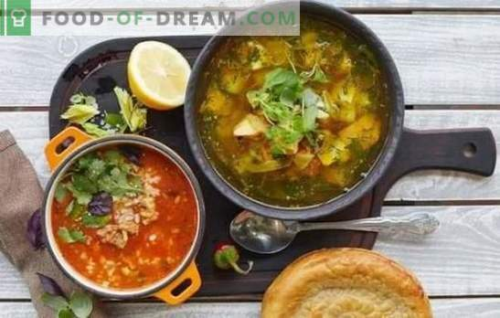 Shurpa à la maison selon des recettes classiques. Cuisiner shurpa à la maison dans un chaudron, une casserole, un multicuiseur