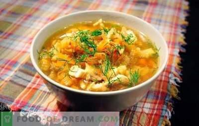 La soupe à la choucroute et au porc est un plat russe pour tous les temps. Recettes de soupe au chou de choucroute avec du porc, des champignons, des haricots, du millet