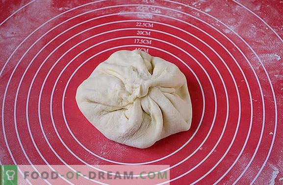 Le khachapuri le plus simple sur le kéfir avec du lait caillé dans une casserole. Photo-recette de l'auteur de khachapuri cuisant dans une casserole avec du lait caillé