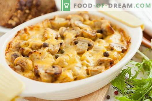 Casserole aux champignons - les meilleures recettes. Comment bien et savoureux cuire une casserole avec des champignons.