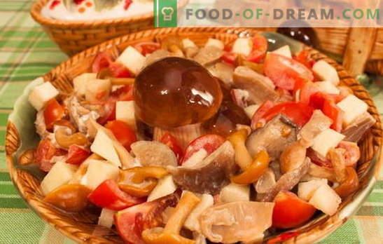 Les champignons à la tomate sont les meilleures recettes. Méthodes de cuisson des champignons avec des tomates: faire frire, faire bouillir, mijoter, cuire au four, faire mariner