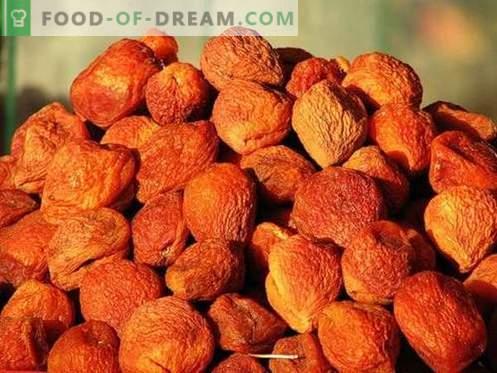 Abricot - description, propriétés utiles, utilisation en cuisine. Recettes aux abricots secs.