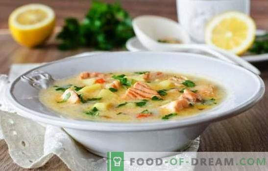 La soupe au fromage fondu est un simple plat gastronomique. Les meilleures recettes pour les soupes au fromage à partir de fromage fondu