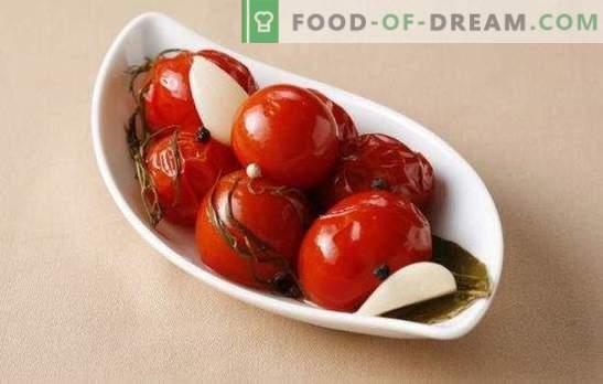 Tomates salées pour l'hiver: une banque de vitamines. Options de cuisson simples et délicieuses pour les tomates salées pour l'hiver