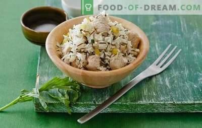 Riz à la dinde: une vraie cuisine maison. Recettes-variations sur dinde avec du riz: dans une casserole, dans une casserole, dans des casseroles, dans une cocotte