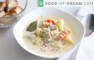 Soupe de filet de poulet - il m'aimera bien! Recettes de soupe au filet de poulet: riz, fromage, champignons, légumes et haricots