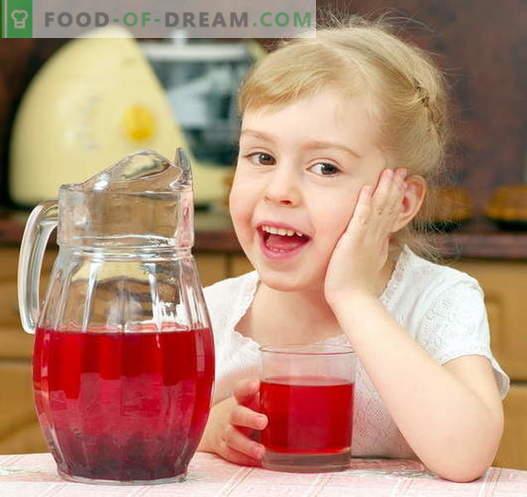 Compote pour un enfant - les meilleures recettes. Comment bien et savoureuse compote pour l'enfant.