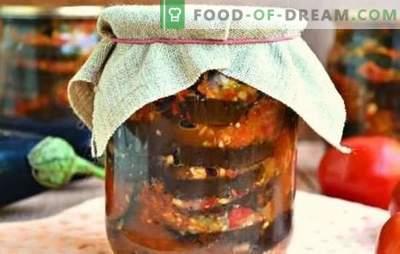 Entrées d'aubergines épicées pour l'hiver: salade, sautée, Ogonek. Options de collations d'aubergines pour l'hiver avec des tomates