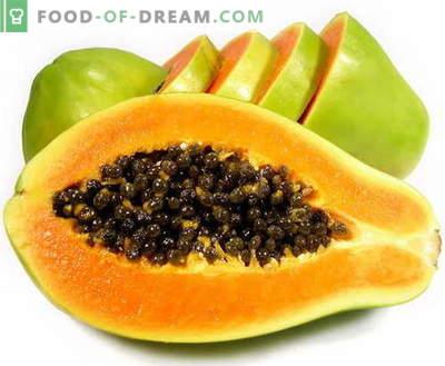Papaye - description, propriétés utiles, utilisation en cuisine. Recettes à la papaye.