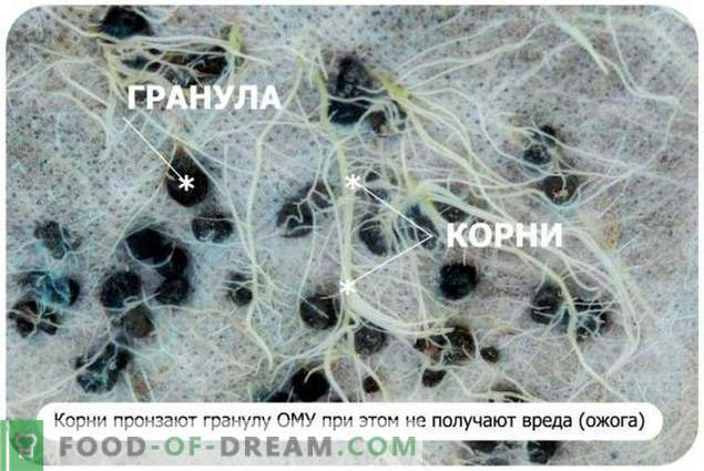Qu'est-ce que les engrais organo-minéraux - le spécialiste