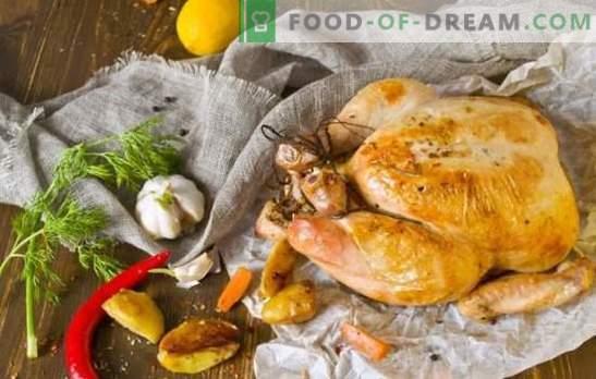 Que cuisiner pour le dîner poulet rapide et savoureux: du classique à exotique. Comment faire cuire un dîner de poulet rapidement et savoureux?