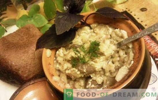 Perlovka en pots - délicieux, pas le mot! Recettes Orge avec de la viande dans des pots avec des légumes, des champignons et du lait