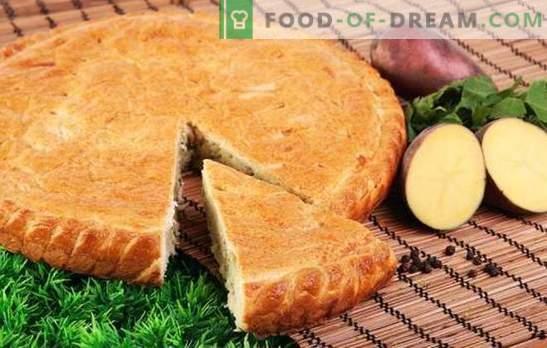 Tarte aux pommes de terre avec des pommes de terre - pas même une miette! Recettes simples de tartes gelées à la mayonnaise, à la crème sure, au kéfir et au ryazhenka