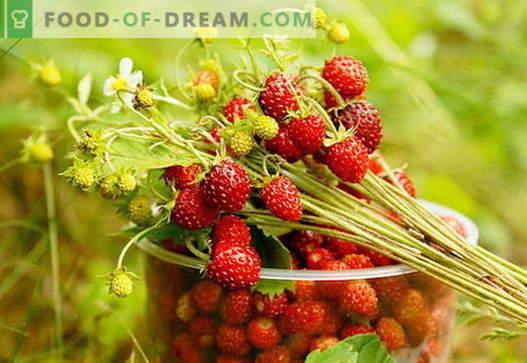 Confiture de fraises: comment cuisiner correctement la confiture de fraises