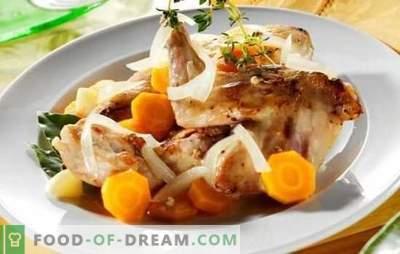 Fricassée de lapin - viande tendre à la sauce parfumée. Les meilleures recettes de fricassées de lapin à la crème, crème sure, lait