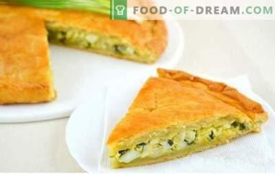 Tarte gelée aux oignons verts et à l'œuf - recettes pour la préparation de pâtisseries parfumées! Les secrets de la cuisson de la tarte gelée aux oignons verts et à l'œuf